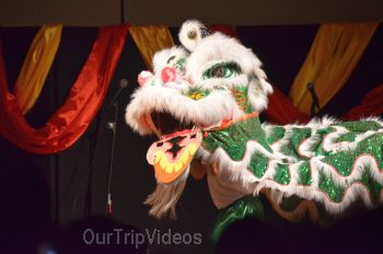 Chinese Lunar New Year Celebration, Milpitas, CA, USA - Picture 23