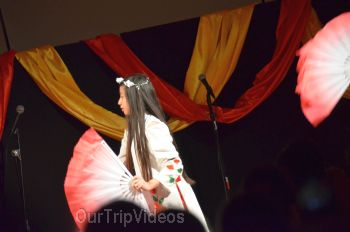 Chinese Lunar New Year Celebration, Milpitas, CA, USA - Picture 25