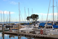 Coyote Point Recreation Area, San Mateo, CA, USA - Picture 4