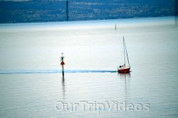 Coyote Point Recreation Area, San Mateo, CA, USA - Picture 19