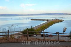 Coyote Point Recreation Area, San Mateo, CA, USA - Picture 24