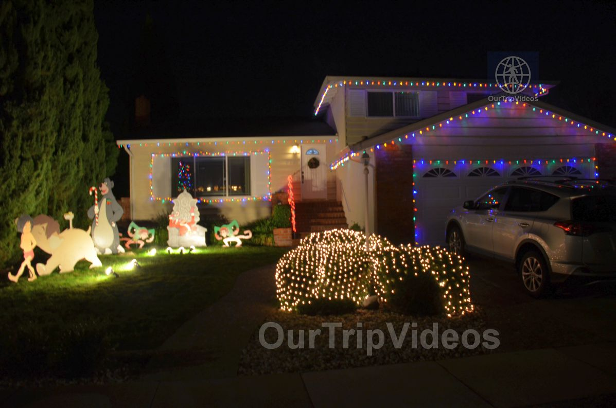 Crippsmas Place - Plywood decorations and Christmas Lights, Fremont, CA, USA - Picture 1 of 25