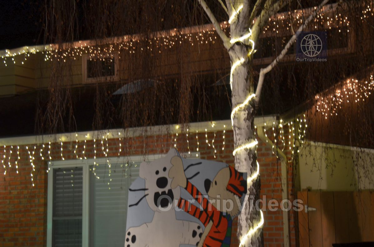 Crippsmas Place - Plywood decorations and Christmas Lights, Fremont, CA, USA - Picture 14 of 25