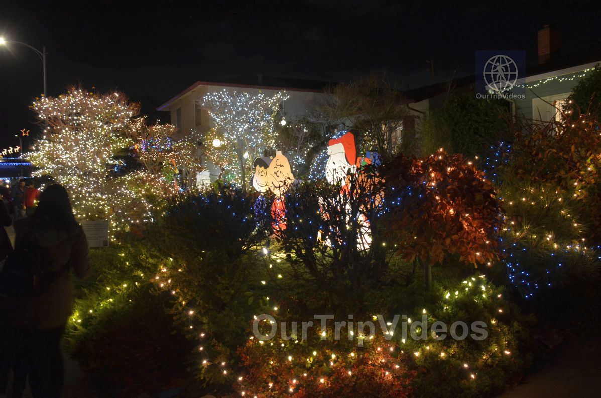 Crippsmas Place - Plywood decorations and Christmas Lights, Fremont, CA, USA - Picture 26 of 50