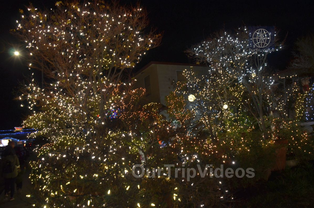 Crippsmas Place - Plywood decorations and Christmas Lights, Fremont, CA, USA - Picture 28 of 50