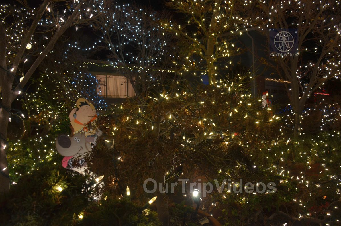 Crippsmas Place - Plywood decorations and Christmas Lights, Fremont, CA, USA - Picture 31 of 50