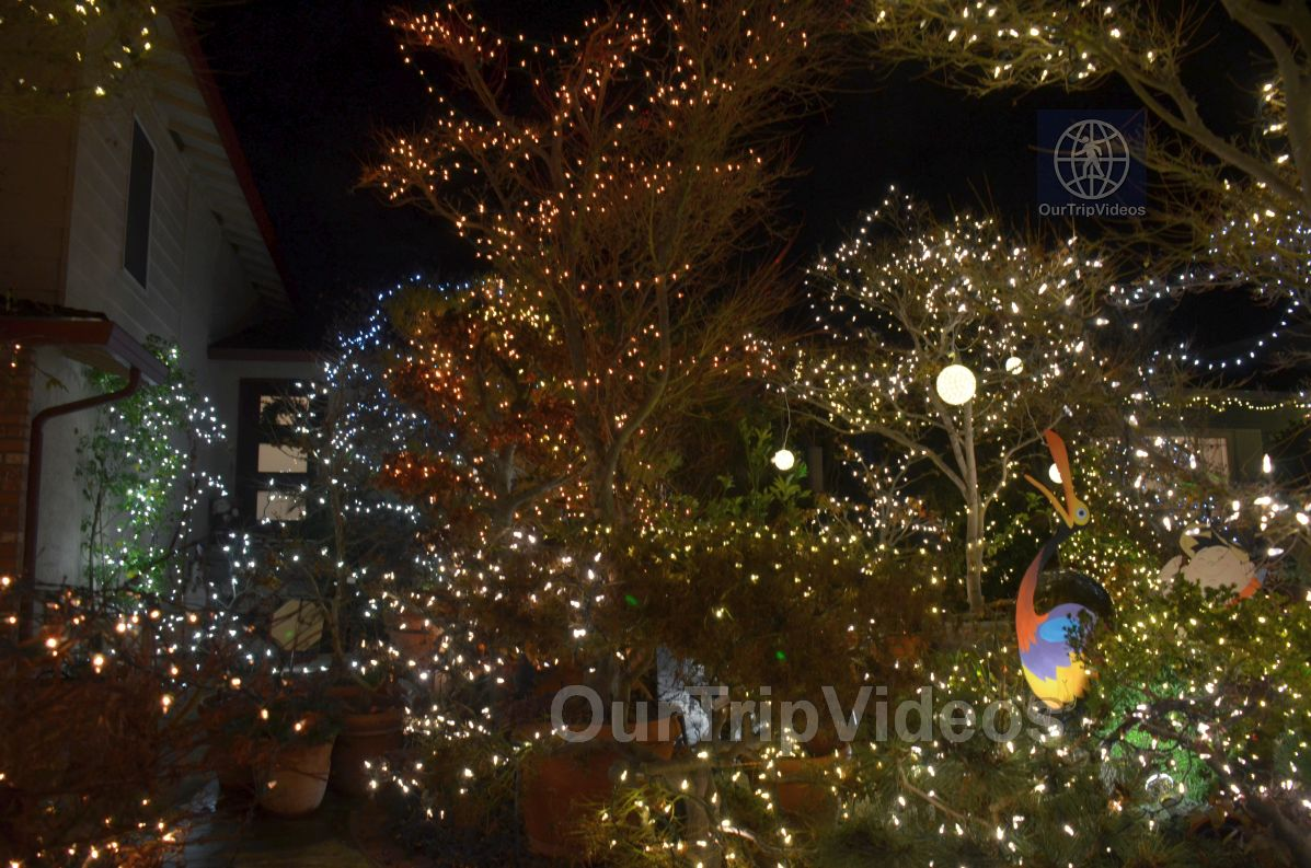 Crippsmas Place - Plywood decorations and Christmas Lights, Fremont, CA, USA - Picture 33 of 50