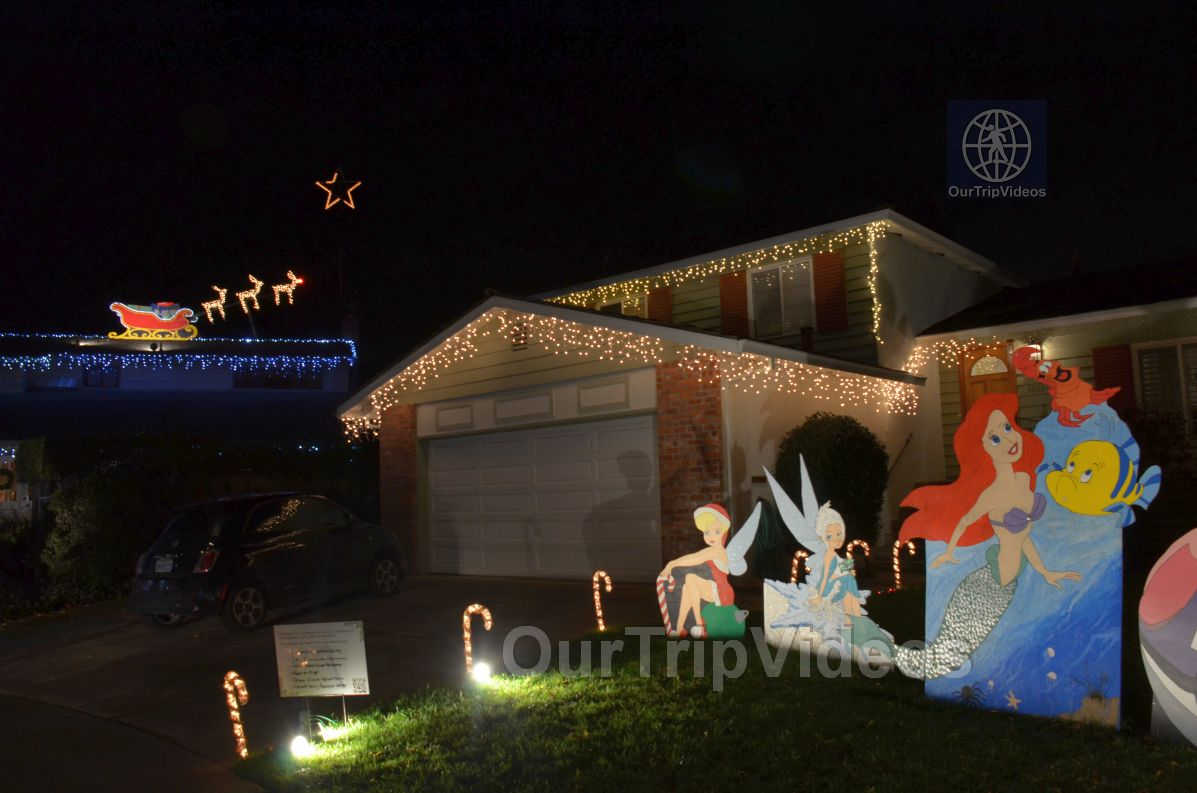 Crippsmas Place - Plywood decorations and Christmas Lights, Fremont, CA, USA - Picture 44 of 50
