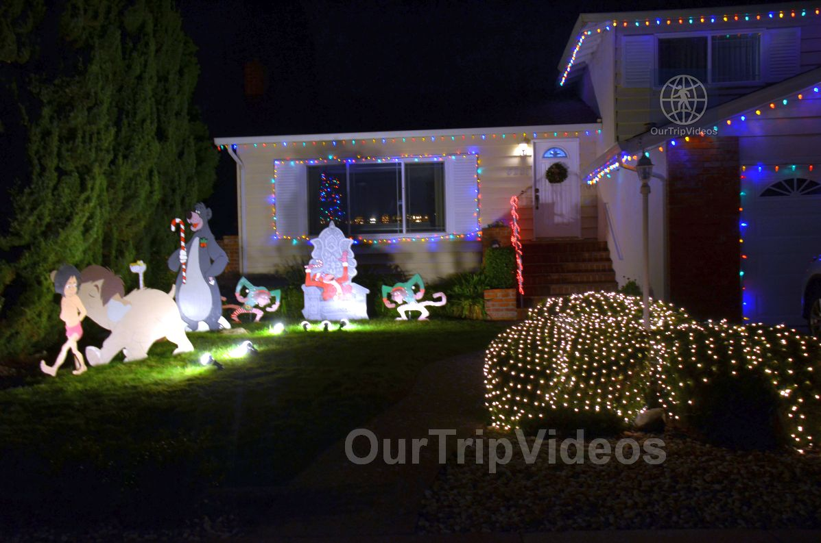 Crippsmas Place - Plywood decorations and Christmas Lights, Fremont, CA, USA - Picture 80 of 100
