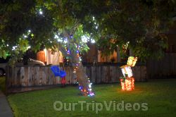 Crippsmas Place - Plywood decorations and Christmas Lights, Fremont, CA, USA - Picture 5