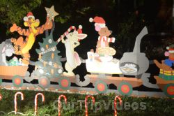 Crippsmas Place - Plywood decorations and Christmas Lights, Fremont, CA, USA - Picture 10