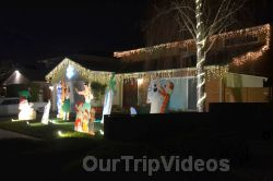 Crippsmas Place - Plywood decorations and Christmas Lights, Fremont, CA, USA - Picture 11