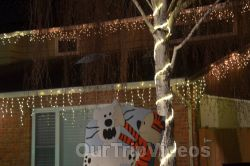 Crippsmas Place - Plywood decorations and Christmas Lights, Fremont, CA, USA - Picture 14