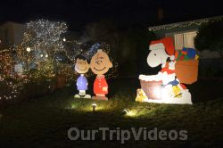 Crippsmas Place - Plywood decorations and Christmas Lights, Fremont, CA, USA - Picture 27