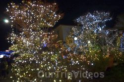 Crippsmas Place - Plywood decorations and Christmas Lights, Fremont, CA, USA - Picture 28