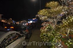 Crippsmas Place - Plywood decorations and Christmas Lights, Fremont, CA, USA - Picture 29