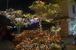Crippsmas Place - Plywood decorations and Christmas Lights, Fremont, CA, USA - Picture 32