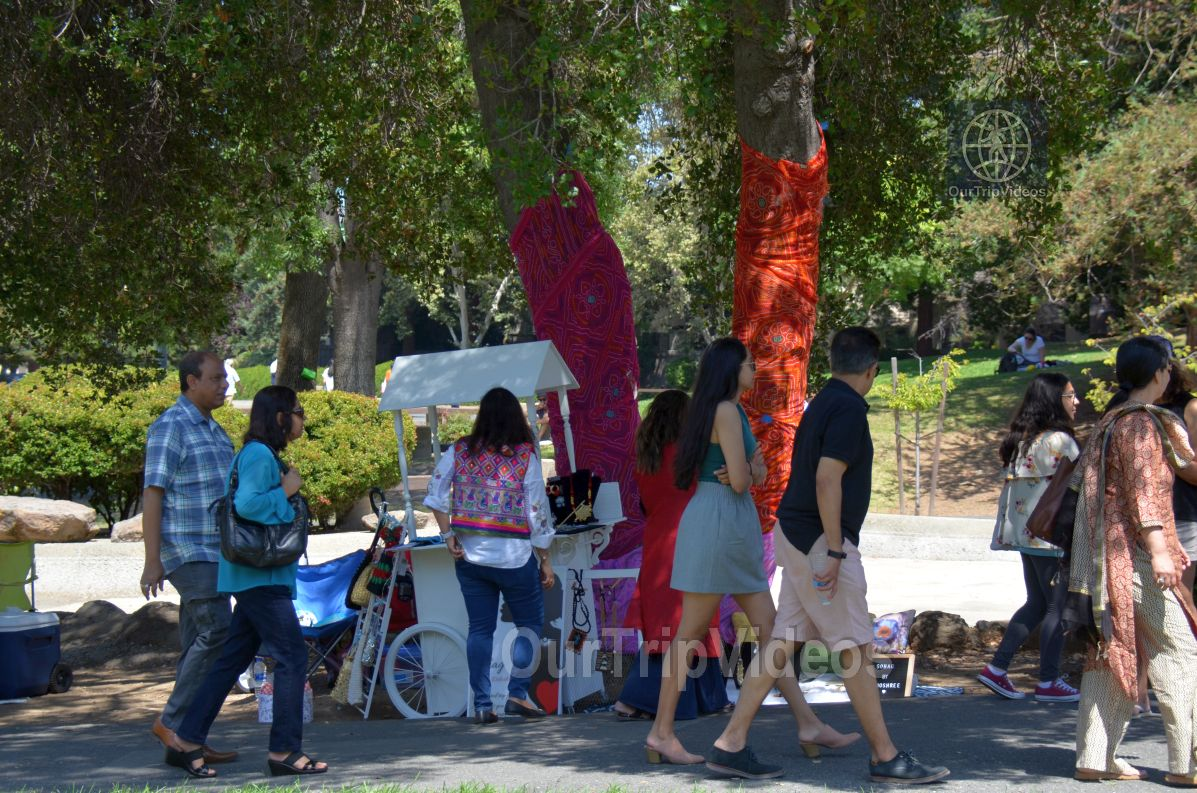 Dilli Haat Food and Folk Festival, Cupertino, CA, USA - Picture 10 of 25