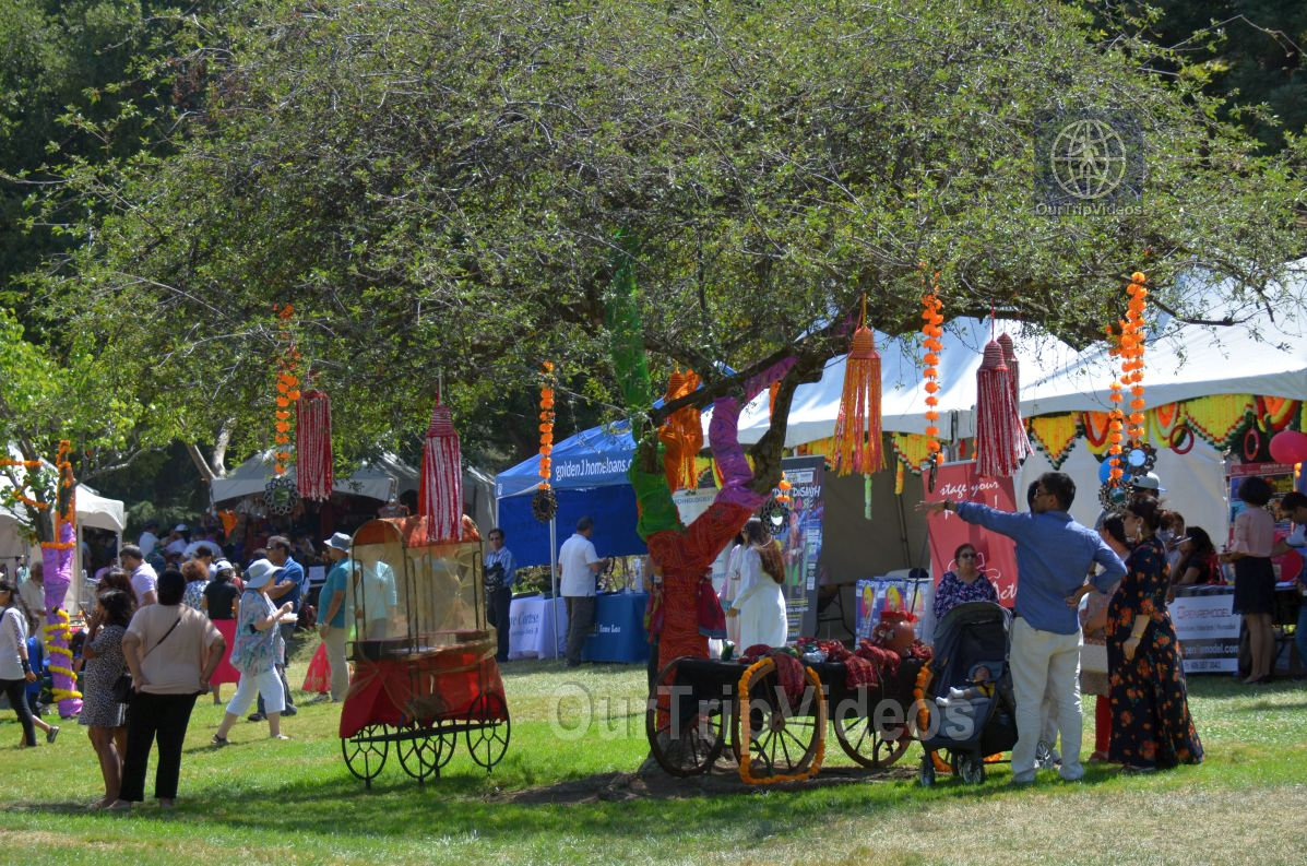 Dilli Haat Food and Folk Festival, Cupertino, CA, USA - Picture 12 of 25