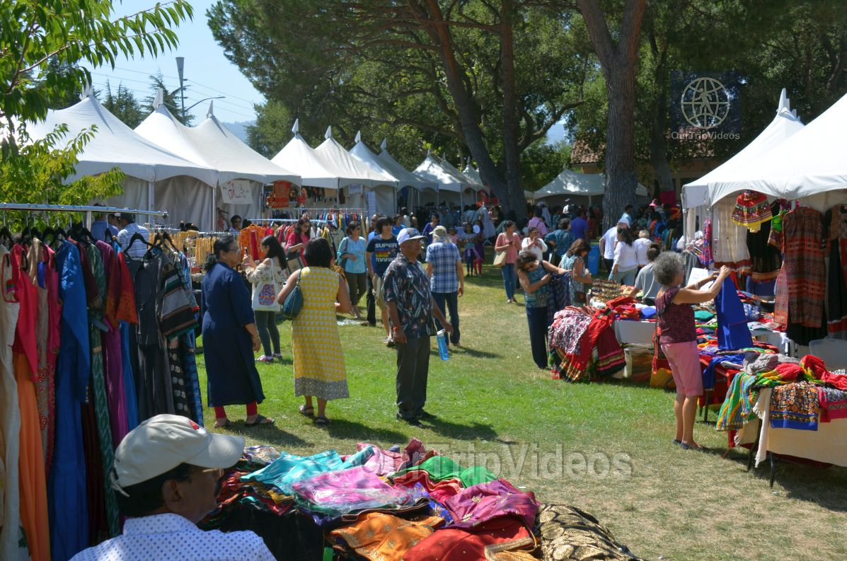 Dilli Haat Food and Folk Festival, Cupertino, CA, USA - Picture 18 of 25