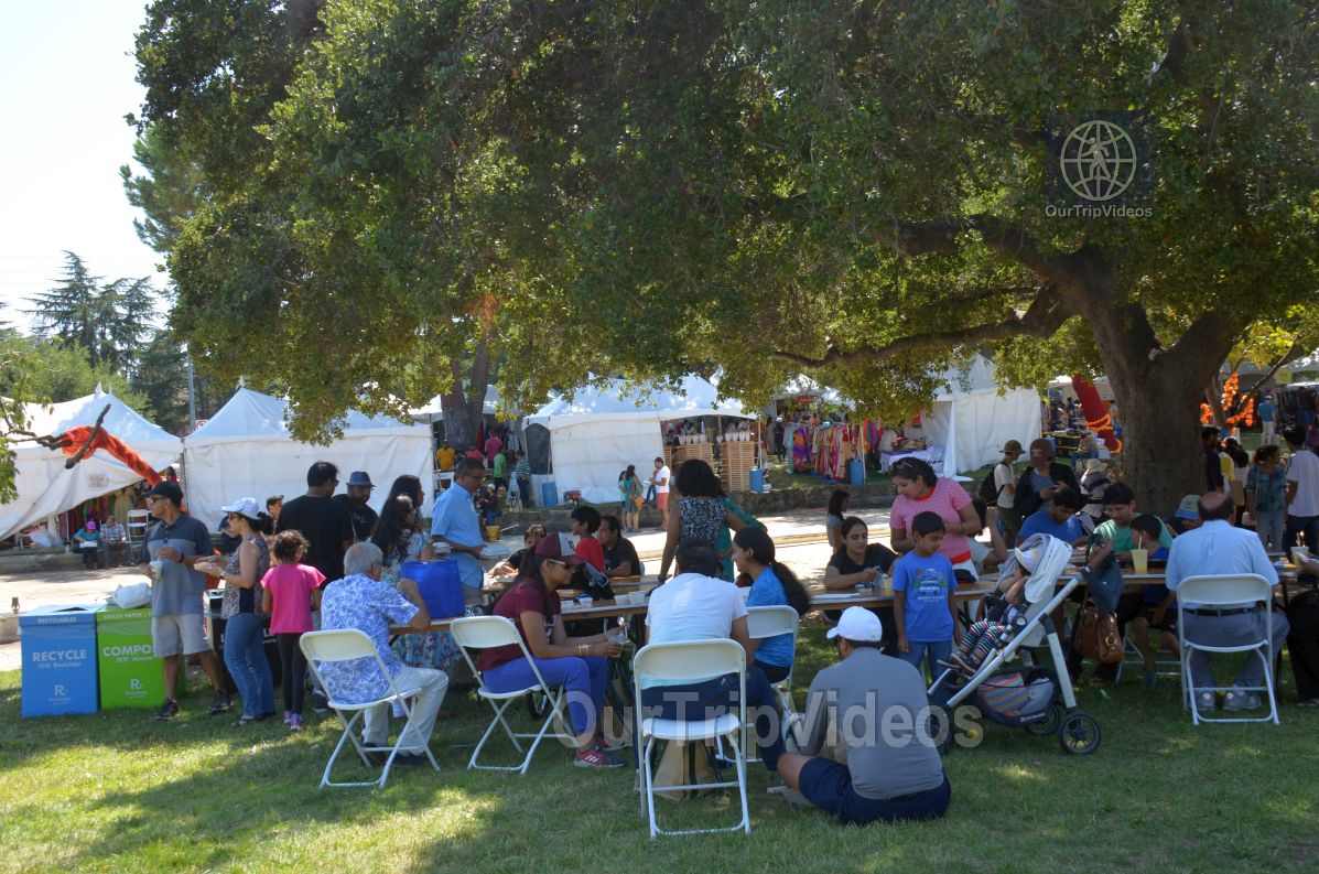 Dilli Haat Food and Folk Festival, Cupertino, CA, USA - Picture 21 of 25