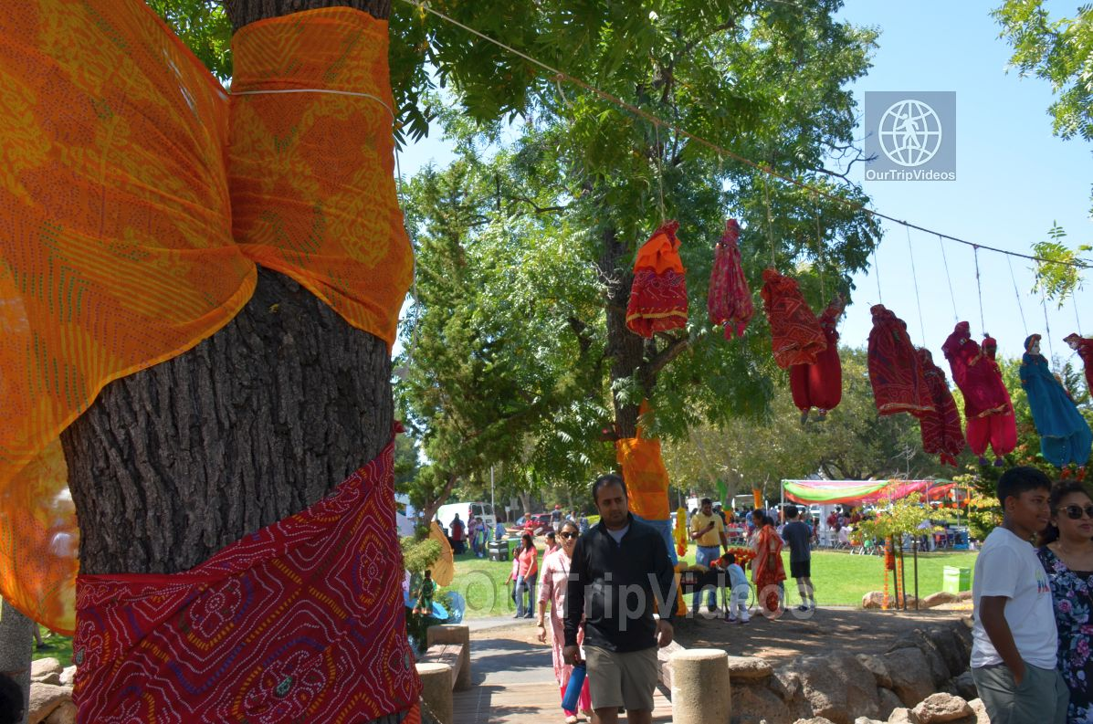 Dilli Haat Food and Folk Festival, Cupertino, CA, USA - Picture 23 of 25