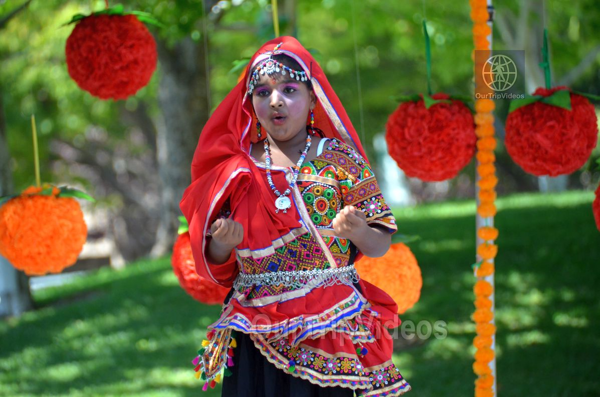 Dilli Haat Food and Folk Festival, Cupertino, CA, USA - Picture 43 of 50