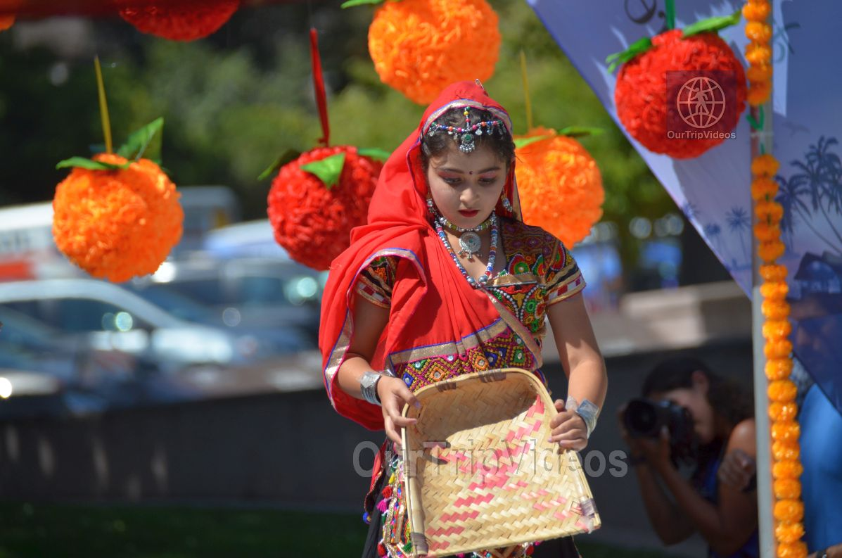 Dilli Haat Food and Folk Festival, Cupertino, CA, USA - Picture 46 of 50