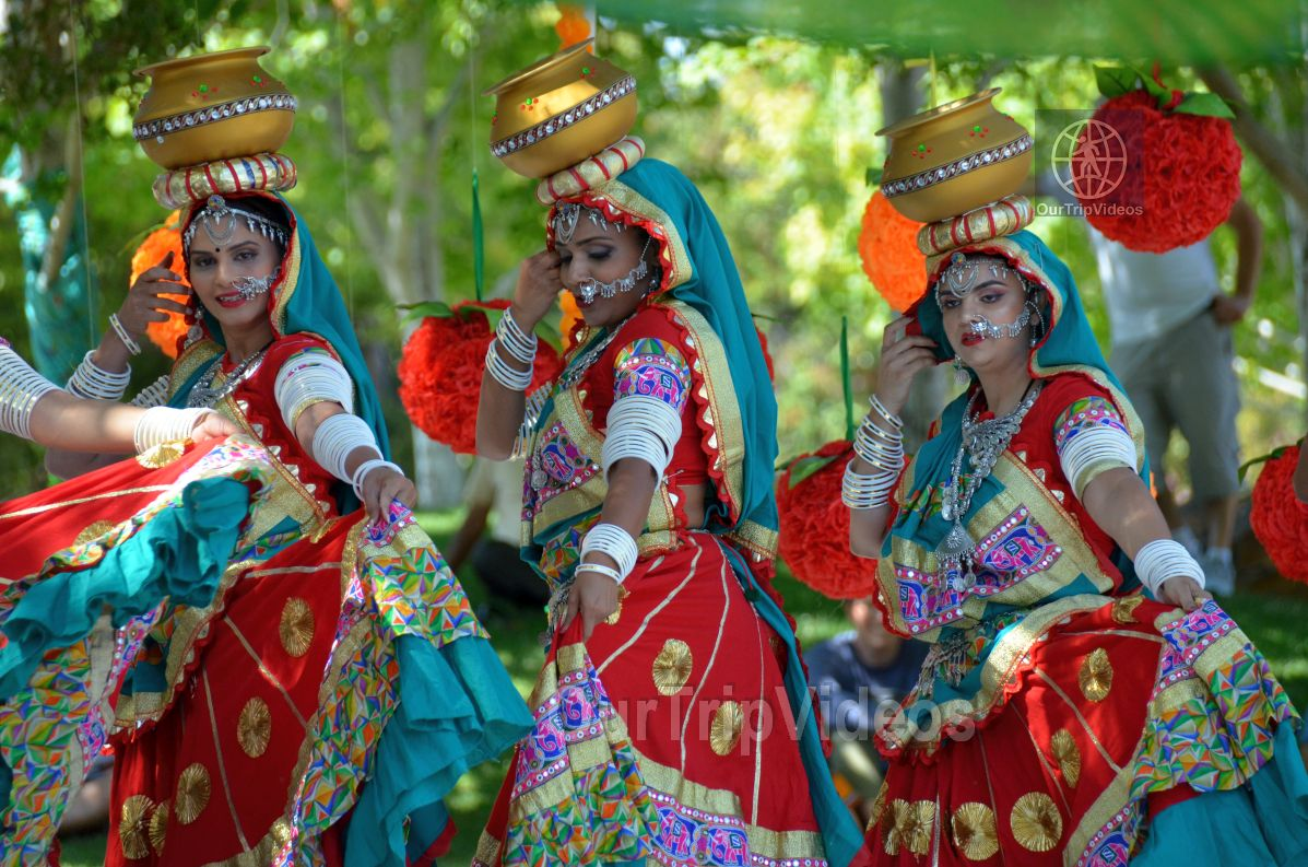 Dilli Haat Food and Folk Festival, Cupertino, CA, USA - Picture 61 of 75