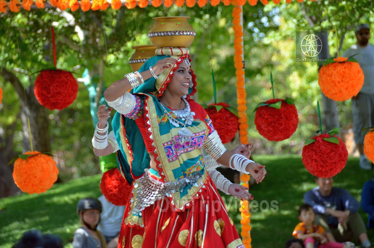 Dilli Haat Food and Folk Festival, Cupertino, CA, USA - Picture 64 of 75