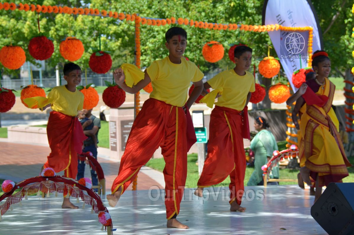 Dilli Haat Food and Folk Festival, Cupertino, CA, USA - Picture 80 of 100