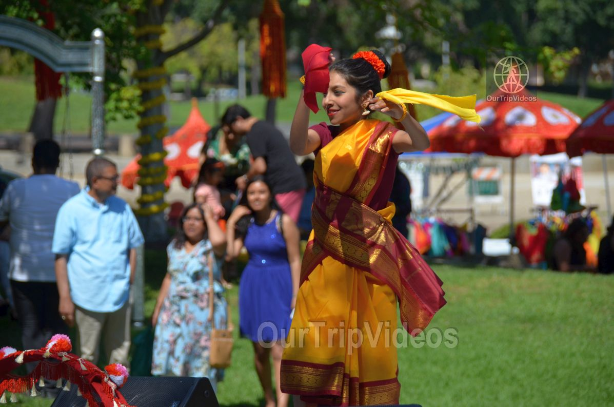 Dilli Haat Food and Folk Festival, Cupertino, CA, USA - Picture 81 of 100