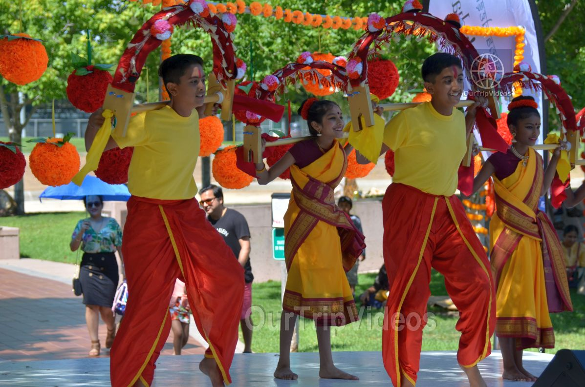 Dilli Haat Food and Folk Festival, Cupertino, CA, USA - Picture 89 of 100