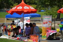 Dilli Haat Food and Folk Festival, Cupertino, CA, USA - Picture 8