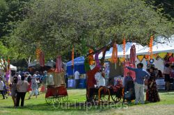 Dilli Haat Food and Folk Festival, Cupertino, CA, USA - Picture 12