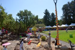 Dilli Haat Food and Folk Festival, Cupertino, CA, USA - Picture 14