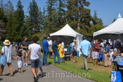 Dilli Haat Food and Folk Festival, Cupertino, CA, USA - Picture 17