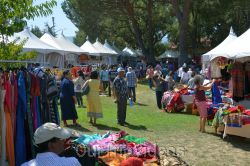 Dilli Haat Food and Folk Festival, Cupertino, CA, USA - Picture 18