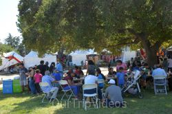 Dilli Haat Food and Folk Festival, Cupertino, CA, USA - Picture 21