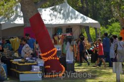 Dilli Haat Food and Folk Festival, Cupertino, CA, USA - Picture 22