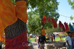 Dilli Haat Food and Folk Festival, Cupertino, CA, USA - Picture 23