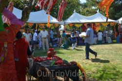 Dilli Haat Food and Folk Festival, Cupertino, CA, USA - Picture 25