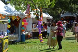 Dilli Haat Food and Folk Festival, Cupertino, CA, USA - Picture 31
