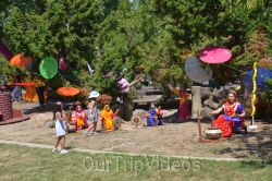 Dilli Haat Food and Folk Festival, Cupertino, CA, USA - Picture 36