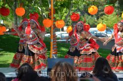 Dilli Haat Food and Folk Festival, Cupertino, CA, USA - Picture 37