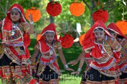 Dilli Haat Food and Folk Festival, Cupertino, CA, USA - Picture 38
