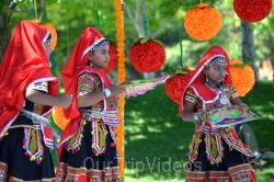 Dilli Haat Food and Folk Festival, Cupertino, CA, USA - Picture 41