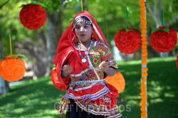 Dilli Haat Food and Folk Festival, Cupertino, CA, USA - Picture 43
