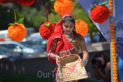 Dilli Haat Food and Folk Festival, Cupertino, CA, USA - Picture 46