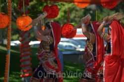 Dilli Haat Food and Folk Festival, Cupertino, CA, USA - Picture 47